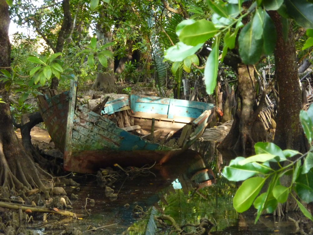 The boat lies in a swamp surrounded by jungle
